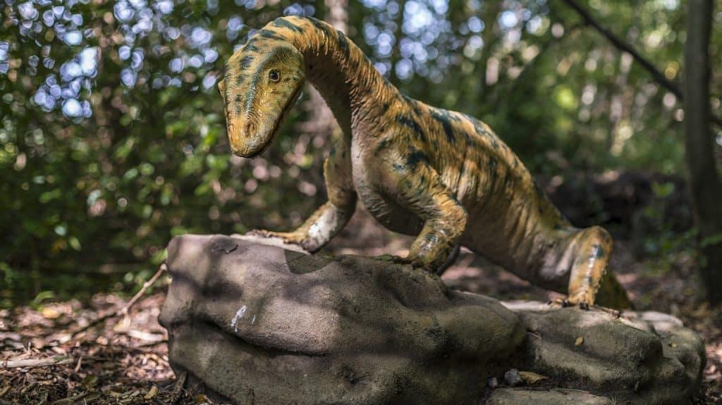 dinosaur on the rocks