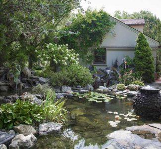 side yard pond