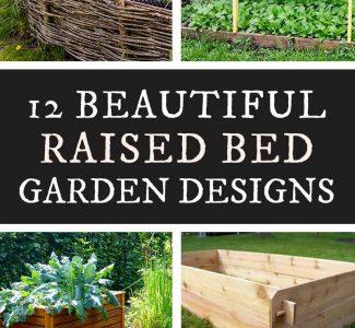 beautiful raised garden bed designs