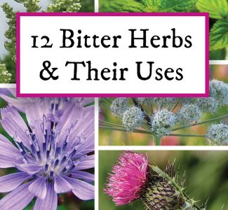 bitter herbs and their uses