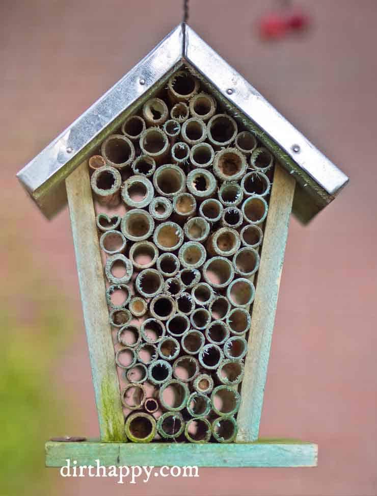 birdhouse into bug hotel