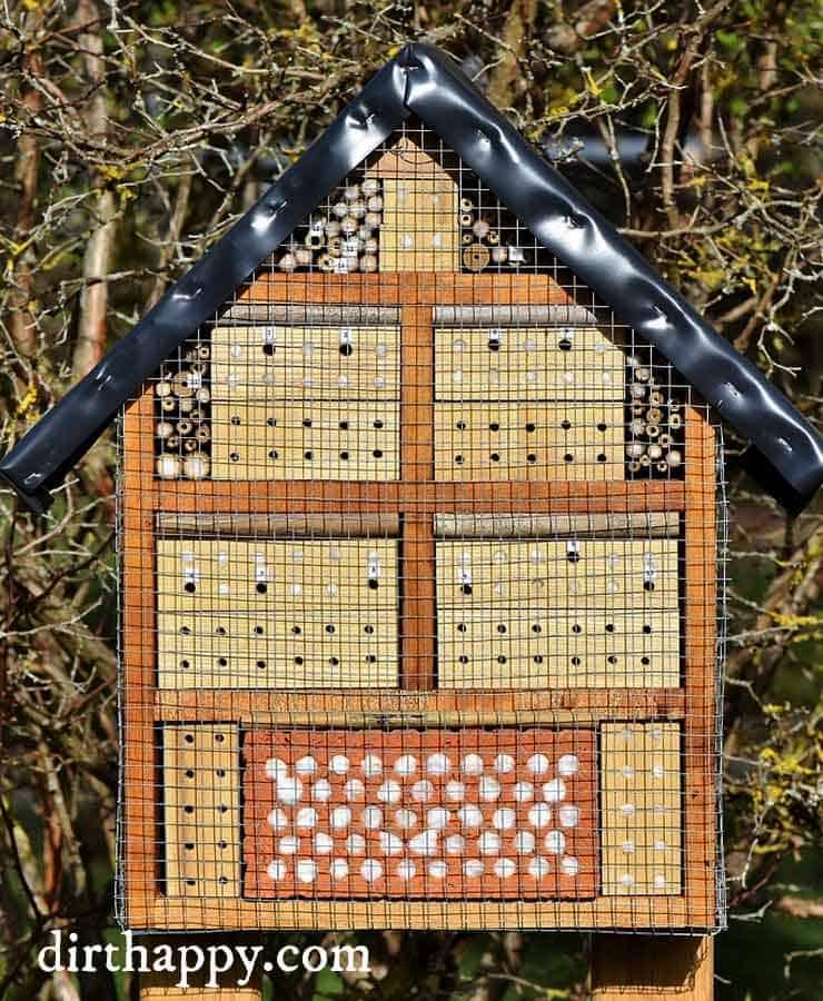 bug hotel box